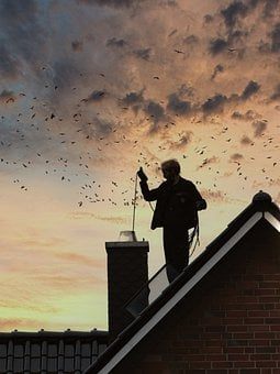 Chimney Sweep, Chimney, Roof, Cleaning